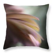 The Feathery Kisses In My Dreams Throw Pillow