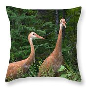 The Females Throw Pillow