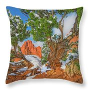 The Ferruginous Earth Of The Rocky Mountain West Throw Pillow