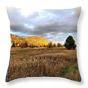 The Field Of Dreams Throw Pillow