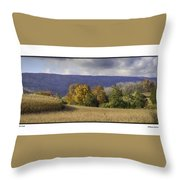 The Field Throw Pillow