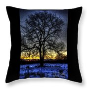 The Field Tree Hdr Throw Pillow