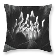 The Fire Inside - Water Lily - Bw Throw Pillow
