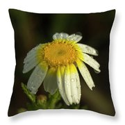 The First Light Throw Pillow