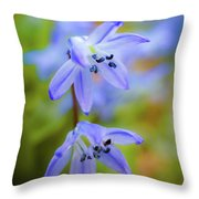 The First Spring Flowers Throw Pillow