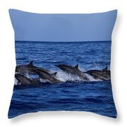 The Flight Of The Spinner Dolphin Throw Pillow