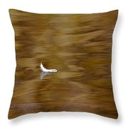 The Floating Feather Throw Pillow
