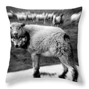 The Flock Is Safe Grayscale Throw Pillow
