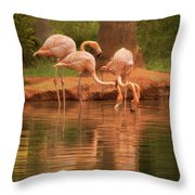 The Flock - The Serenity Of Flamingos At Water's Edge Throw Pillow