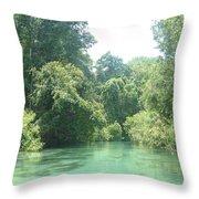 The Florida Calm Throw Pillow