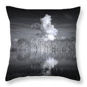 The Florida Everglades Throw Pillow