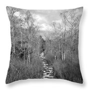 The Florida Trail Throw Pillow