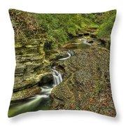 The Flow Throw Pillow by Evelina Kremsdorf