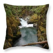 The Flow Of It All  Throw Pillow