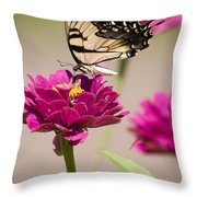 The Flower And Butterfly Throw Pillow