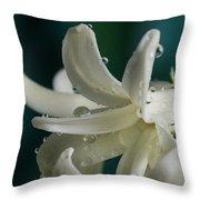 The Flower Of Dews 2 Throw Pillow