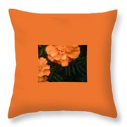 The Flower Series Throw Pillow