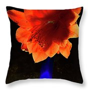 The Flower Of Cactus In A Blue Vase. Throw Pillow