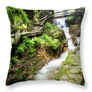 The Flume Gorge Lincoln New Hampshire Throw Pillow