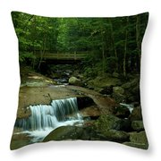The Flume Gorge Trail Throw Pillow
