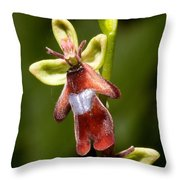 The Fly Orchid Throw Pillow