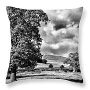 Old John Bradgate Park Throw Pillow by John Edwards