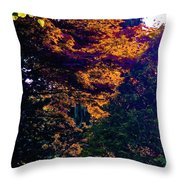 The Forest At Dusk Throw Pillow