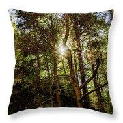 The Forest Sun Throw Pillow
