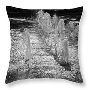 The Fountians Of Climatis Throw Pillow