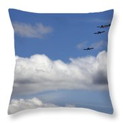 The Four Flying Beetles Throw Pillow