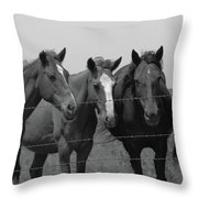 The Four Horses Throw Pillow
