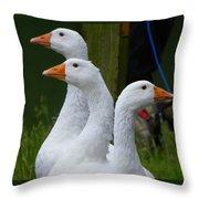 The Fowl Of Borst Park Wa Throw Pillow