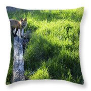 The Fox Throw Pillow