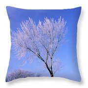 The Frost Like Ashes Throw Pillow