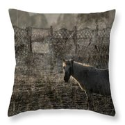 The Frosty Morning Throw Pillow