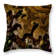 The Frothy Veil Throw Pillow