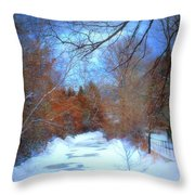 The Frozen Creek Throw Pillow