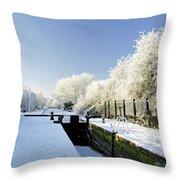 The Frozen Dallow Lane Lock Throw Pillow