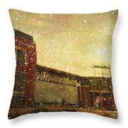 The Frozen Tundra Throw Pillow by Joel Witmeyer