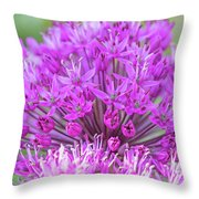 The Full Bloom Of Flowering Ornamental Onion Throw Pillow
