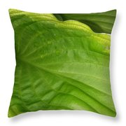 The Funnel Throw Pillow