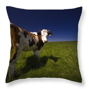 The Funny Cow Throw Pillow