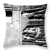 The Future - There Is A Crack In Everything Throw Pillow