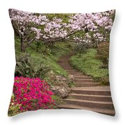 The Garden Steps Throw Pillow
