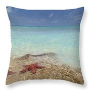 The Gate Keepers Throw Pillow
