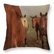 The Gauntlet - Horses Throw Pillow