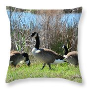 The Geese Are Back Throw Pillow