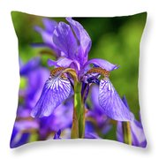 The Gentleness Of Spring 5 Throw Pillow