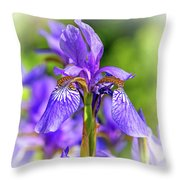 The Gentleness Of Spring 5 - Vignette Throw Pillow