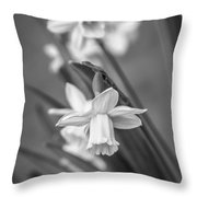 The Gentleness Of Spring Bw Throw Pillow